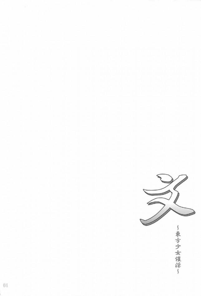 【エロ同人誌 東方】射命丸文が手コキで勃起させたちんぽ口に咥えてフェラで口内射精ごっくんw発情してセックスしちゃうww【無料 エロ漫画】 (3)